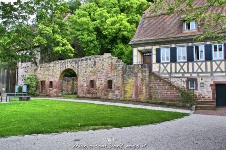 Germany, Wildberg27