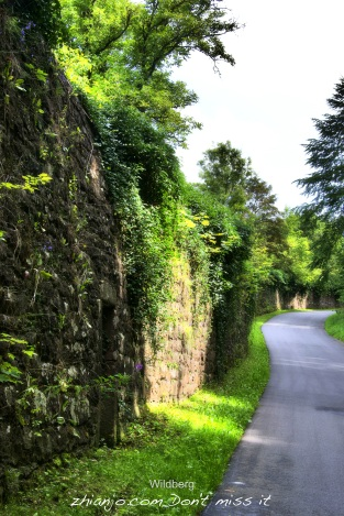 Germany, Wildberg5