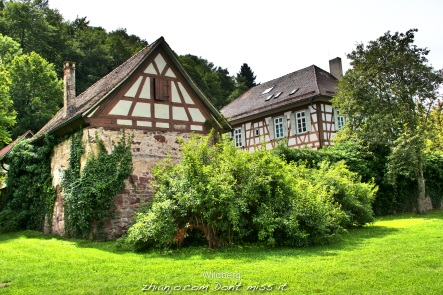 Germany, Wildberg9